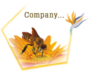 Private Label Organic Honey Suppliers, Exporters & Manufacturers in